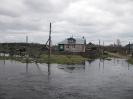 Березайка-Мста (Тверская обл.), май 2011